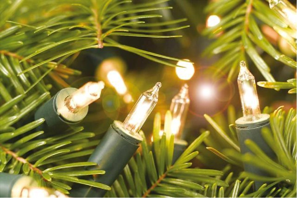 fairy lights christmas tree chesapeake thermal
