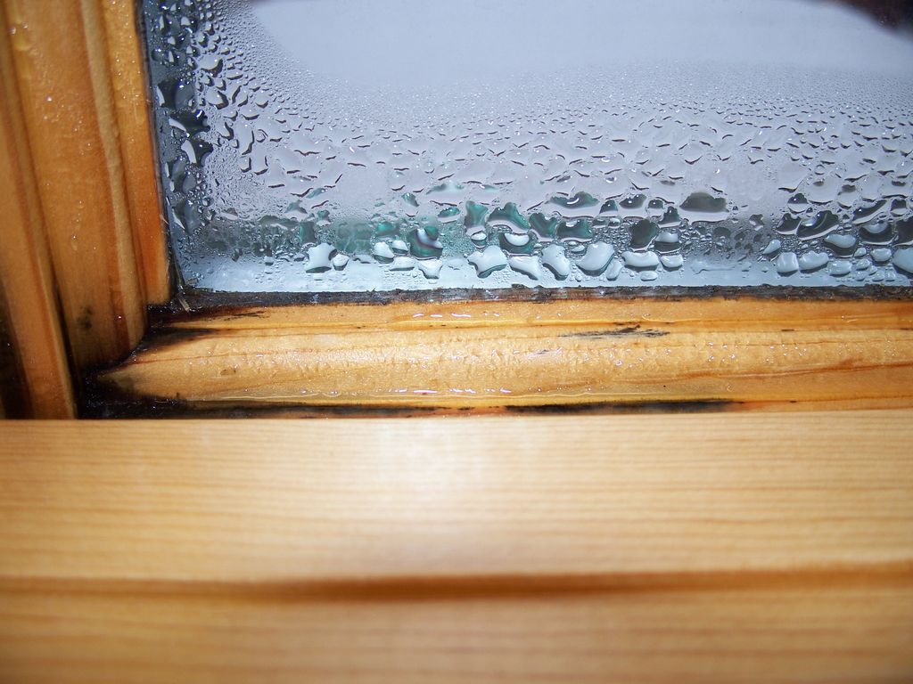Interior condensation can new windows help chesapeake - What temperature is too cold to paint outside ...
