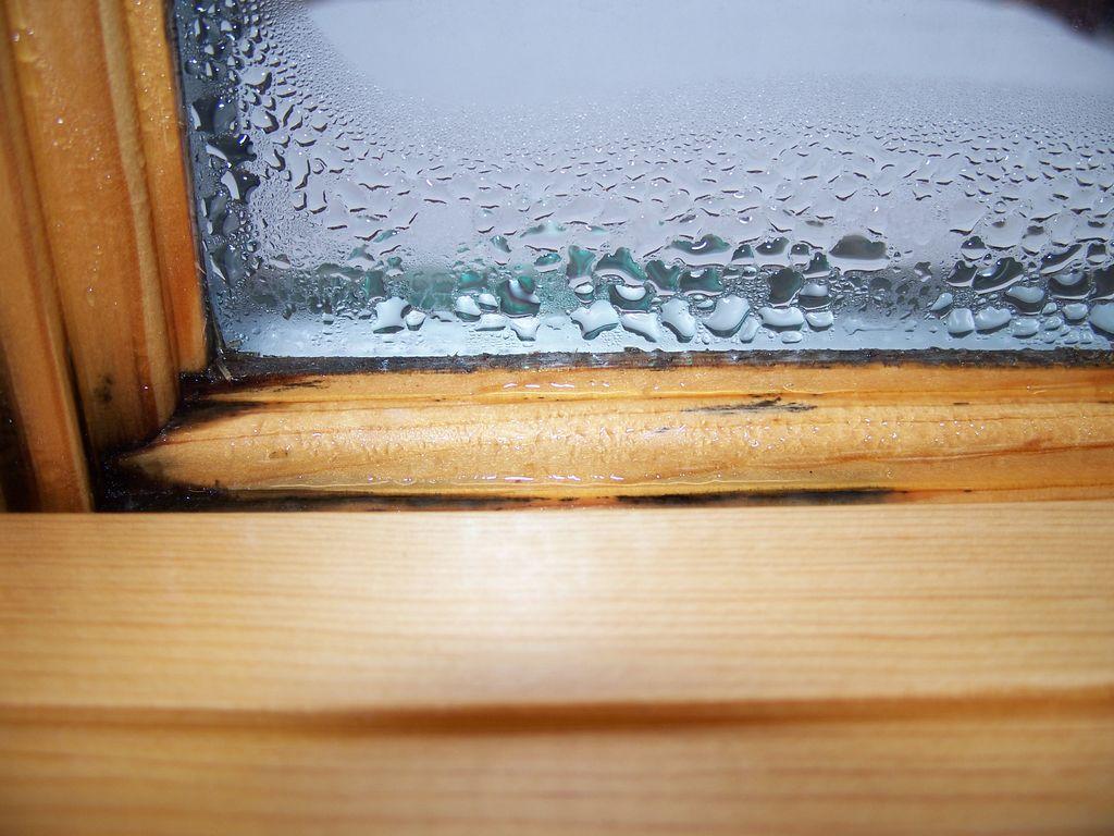 Interior Condensation Can New Windows Help Chesapeake