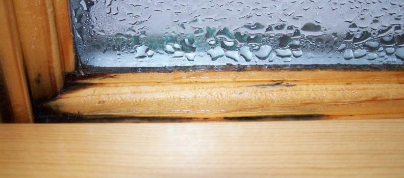 Interior Condensation- Can new windows help?