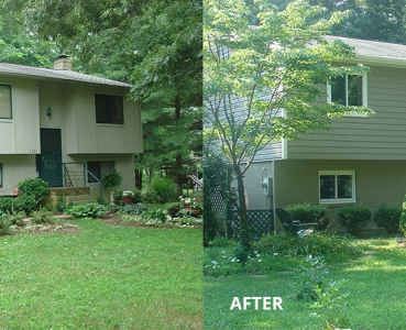 Siding Before & After 2